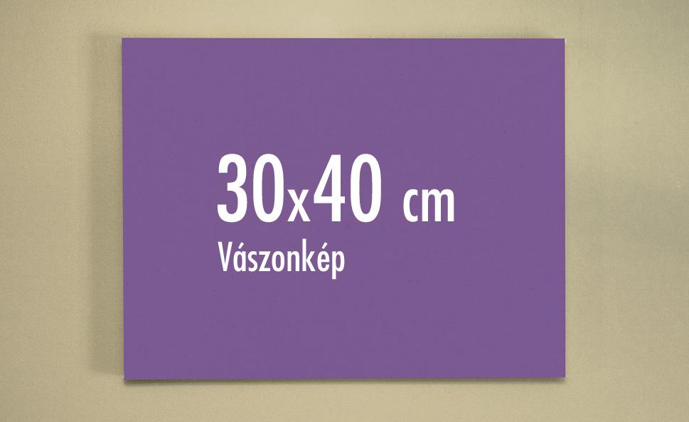 30 x 40 cm vászonkép