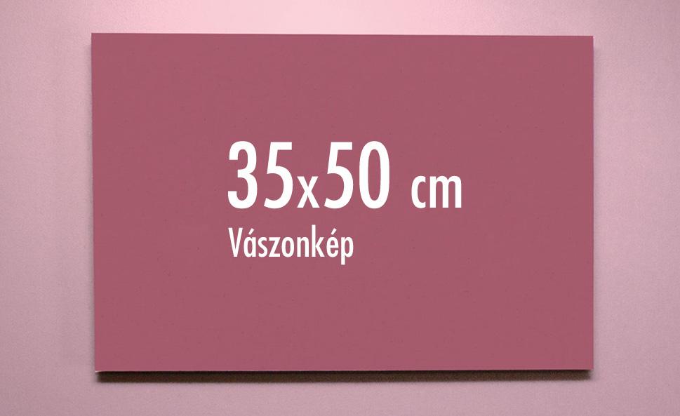 35 x 50 cm vászonkép