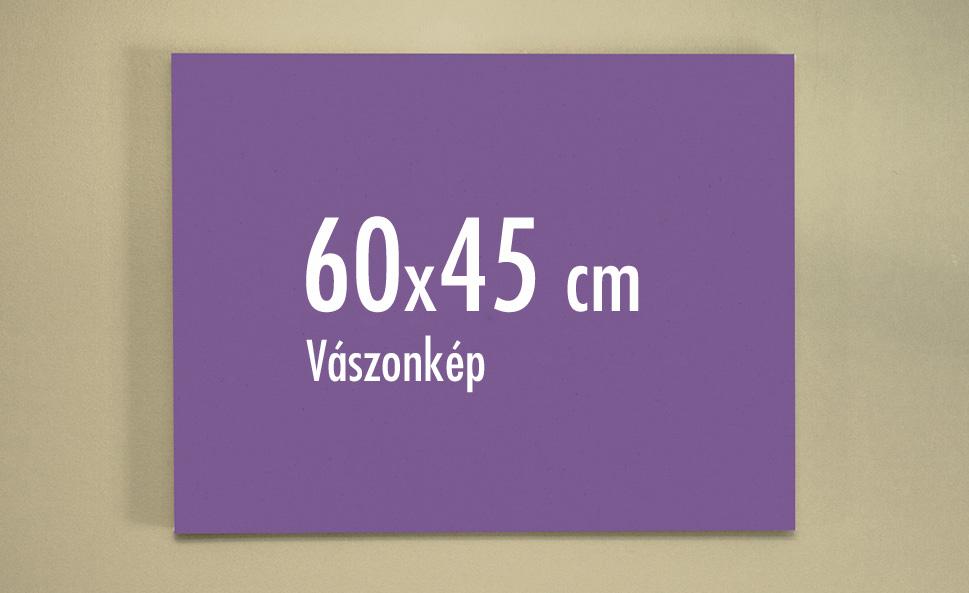 60 x 45 cm vászonkép