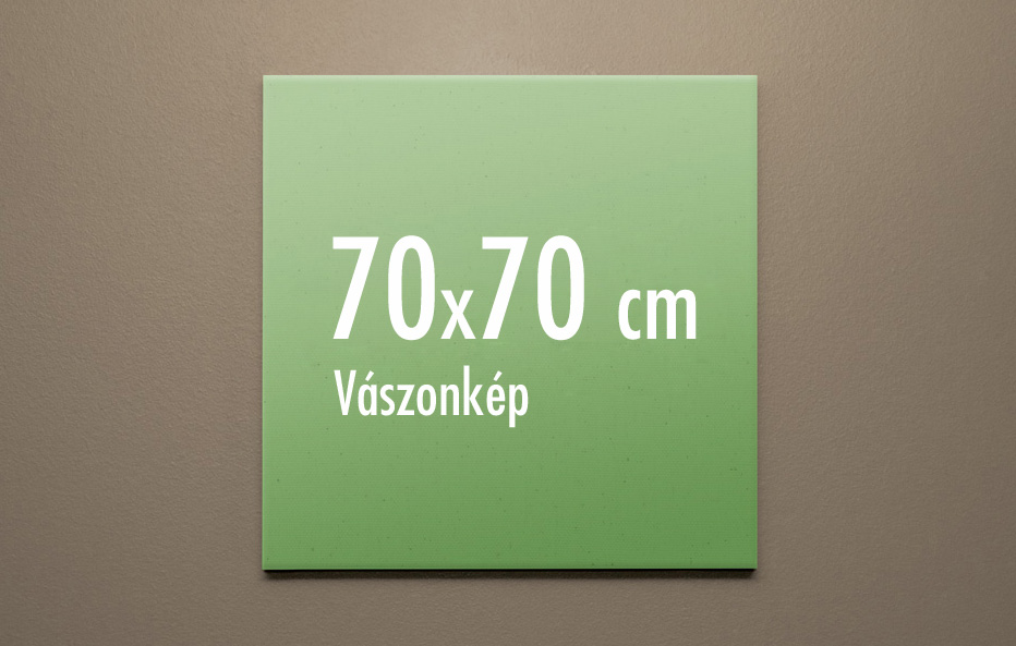 70 x 70 cm vászonkép